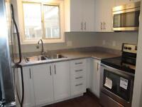 NEW Renovated Townhome, 2.5 Baths, 6 Appliances (North London)