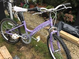 His and hers kids bikes