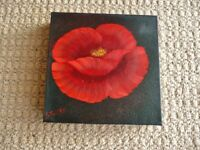 Original Square Canvas Oil Painting of Red Poppy Black Background Signed Stevens