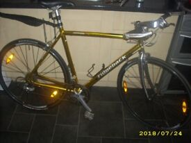 BARGAIN PRICE Ridgeback Genesis Day 01 56cm Fast Commuter Town City Bike Flat Bar Racing Bike