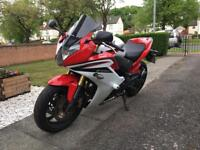 Honda CBR600F 2013 motorcycle. 7800 miles.