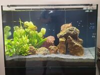 EA Reef Pro 900 with gloss black stand, sump tank, light, pump and hea
