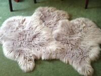 Lilac shaped Fluffy Rugs