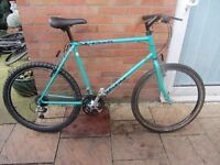 mens raleigh yukon mountain bike 22inch frame with lights and bike lock £49.00