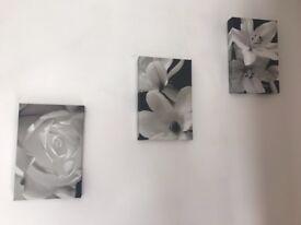 Three next canvas flower pictures