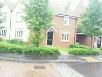 Wiltshire home swap