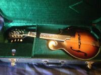 Mandolin Aria AM400 BS