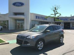 2013 Ford Escape SE, view our report card