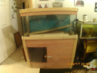FISH TANK FOR FREE TO PICK UP