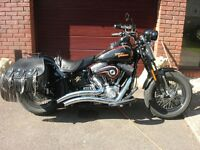 Harley-Davidson 2011 Crossbone