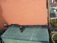 SHAKESPEARE PREMIER CARP ROD&DAIWA REGAL-X4050 BAITRUNNER REEL