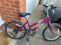 Raleigh bicycle £25