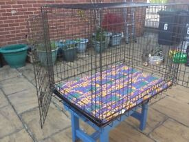 Dog Cage and car ramp for dog
