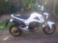 Honda msx 125 ...Showroom condition low milage and some freebies, jacket, helmet, Oxford security.