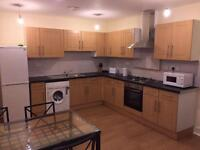 Nice twin room in Clapham - NO AGENCY FEE!!
