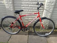 mens 21in professional hybrid bike, lights, excellent condition ready to ride FREE DELIVERY