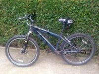 "Raleigh Mountain Bike - 26"" Wheels"