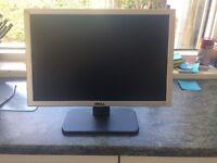 Dell 19inch Widescreen LCD Monitor