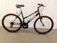 Almost new Condition 21 speed Mountain Bike