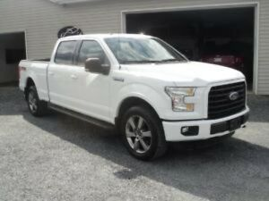 2015 Ford F-150 Platine/Lariat/King Ranch/XLT/XL