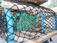 5 Crab/Lobster Pots
