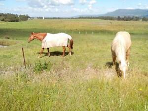 WANTED..SOLAR ELECTRIC FENCE ENERGISERS Nowra Nowra-Bomaderry Preview