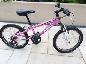 Jamis X20 girls mountain bike