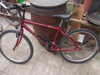 "mens mountain bike raleigh Avalanche 26"" wheels"