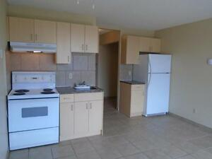 Newly Renovated Bachelor Suite - For Rent