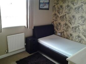 Cosy and immaculate single room