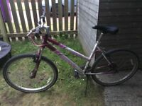 Ladies Reebok bike for sale