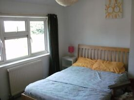 room to rent in a cozy retro two bedroom house sharing with friendly landlord