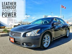 2010 Nissan Maxima SV Leather Sunroof  FREE Delivery