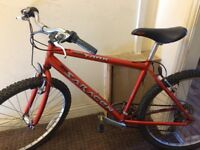 Mountain bike mint condition