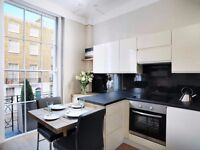~~~LUXURY 1BEDROOM FLAT IN MARYLEBONE AVAILABLE FROM NOW~~~