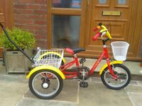 Childs special needs Musketeer trike