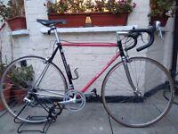 Vintage Italian Debarnardi Columbus Steel Frame Racer/Road bike