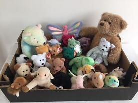 Collection of Approx 24 Ty beanie toys and 1 Bear Factory bear.