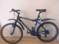 Trek 3900 / Mountain Bike + Accessories