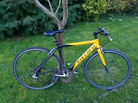 Carrera tdf ltd Road&City Bike