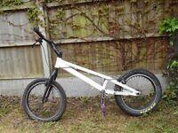 Onza t bird trials bike project