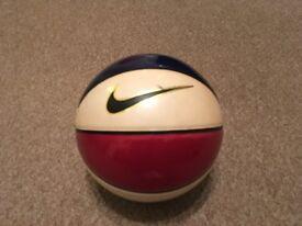 Premium Nike Indoor Basketball