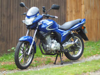 Kymco Pulsar 125 cc - Great Learner or Commuter - Low Mileage - Blue - 125cc - MOT till June 2018