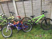 Selection of children's bikes