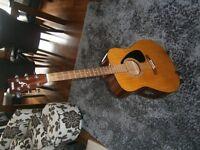 Yamaha Electro-Acoustic Guitar