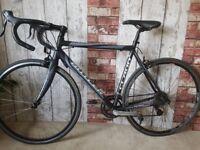 Claud Butler Trieste. 56cm Ladies Road Racing Bike RRP £450 Great Condition Carbon Fork