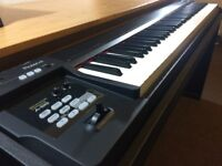 Roland A-88 MIDI Keyboard Controller & Original Custom Made Stand