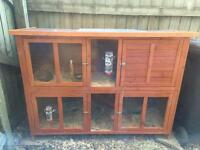 Double Guinnea Pig Hutch