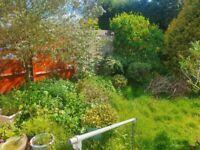 Freelance Gardener East London