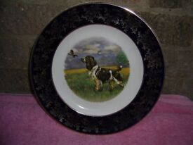 Plate Depicting English Springer Spaniel and Partridge